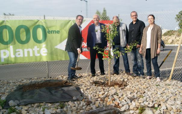 TGG GINESTON plante son nouvel arbre !